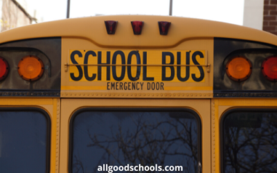 18 Features Of A Great School Transport System